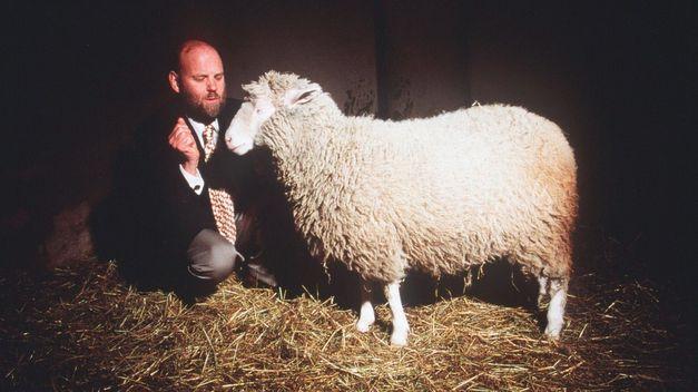 Великобритания: отец овечки Долли получил разрешение клонировать человеческий эмбрион